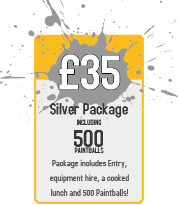 Bronze Package : £35 for Paintball Including 500 Paintballs
